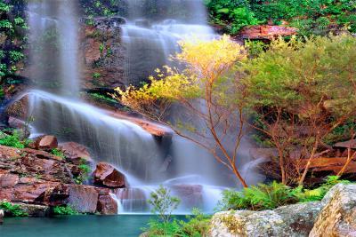 kolorowy-wodospad-w-lesie