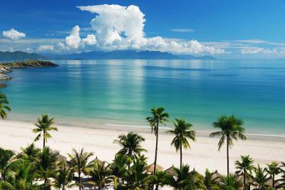 tropikalna-wyspa-i-palmy