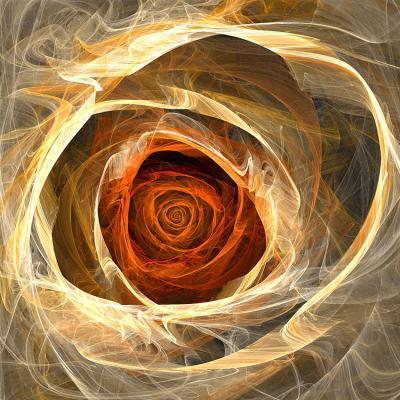 pomaranczowa-roza-dymna