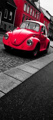 czerwony-garbus