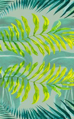 zielone-liscie-palmy-na-turkusowym-tle