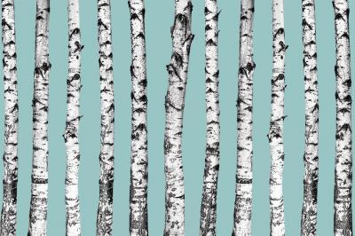 biale-drzewa-na-blekitnym-tle