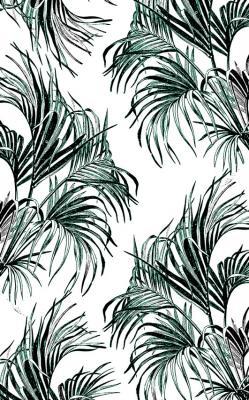 tropikalne-liscie-palmy-na-bialym-tle