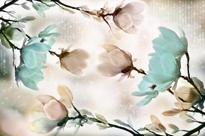 mietowe-magnolie