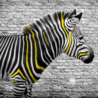 zebra-w-zolte-paski-na-tle-bialej-cegly
