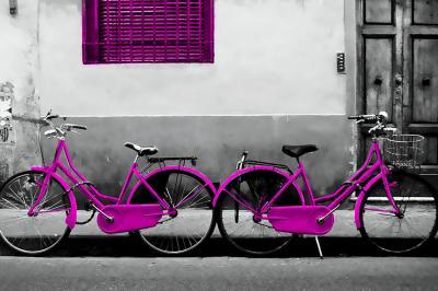 fioletowe-rowery-i-zniszczona-ulica