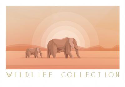 slonie-na-sawannie