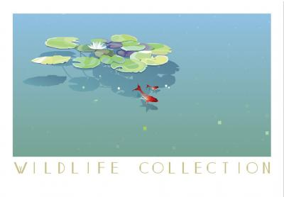 lilie-wodne-i-rybki