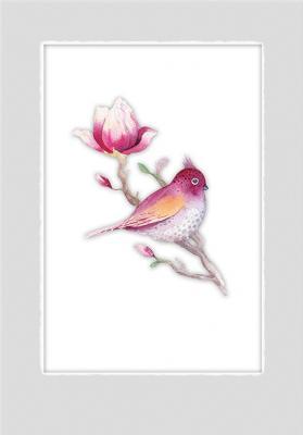 magnolia-i-gil