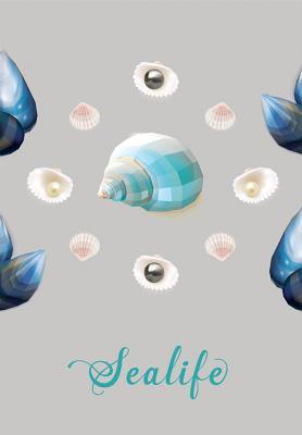 morskie-muszle