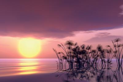 fioletowy-zachod-slonca-nad-jeziorem