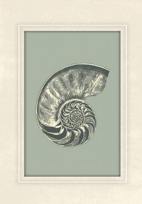 motyw-skamieliny