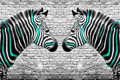 dwie-zebry-w-turkusowe-paski