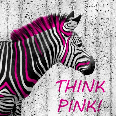 zebra-z-irokezem-na-betonie