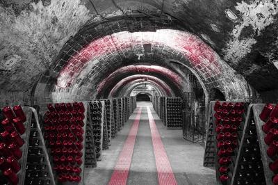 szara-winnica-i-rozowe-butelki-wina