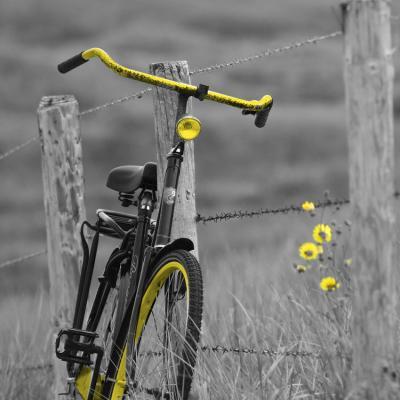 zolty-rower-na-szarej-polanie