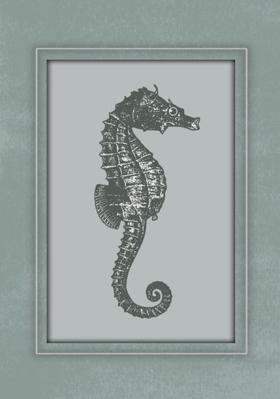 konik-morski