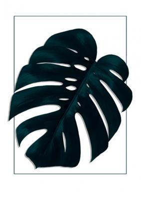 motyw-tropikalnego-liscia