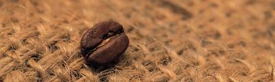 ziarno-kawy-na-plotnie