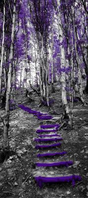 fioletowe-schodki-i-drzewa-w-lesie