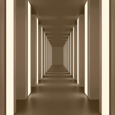 brazowy-korytarz