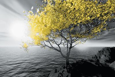 zolte-drzewo