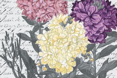 duze-kwiaty-na-papierze