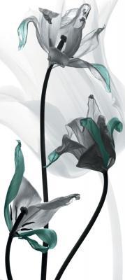 tulipany-z-turkusowymi-akcentami