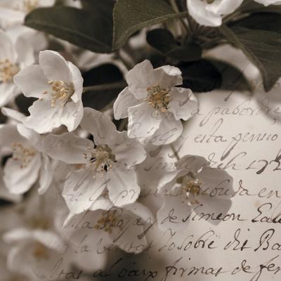 kwiatuszki-na-galazce-i-napisy