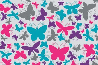 kolorowe-motylki