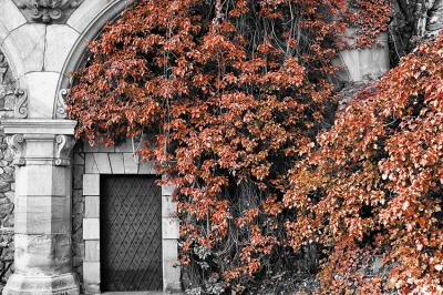 tajemnicze-drzwi