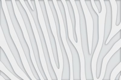 biala-abstrkacja
