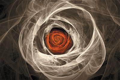 dymna-roza-w-sepii