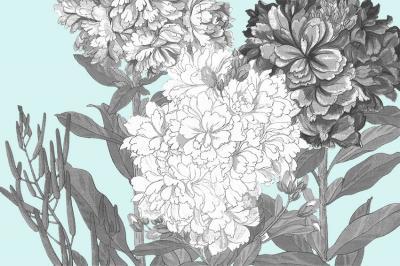graficzne-kwiatki