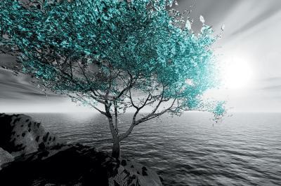 turkusowe-drzewo-na-skale