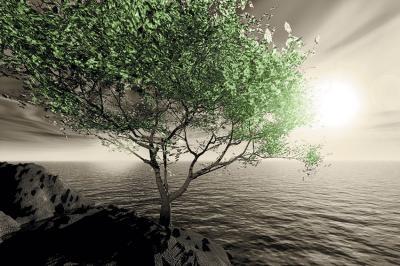 zielone-drzewo-i-krajobraz-w-sepii