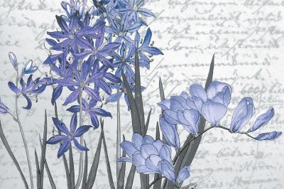 kwiaty-i-napisy