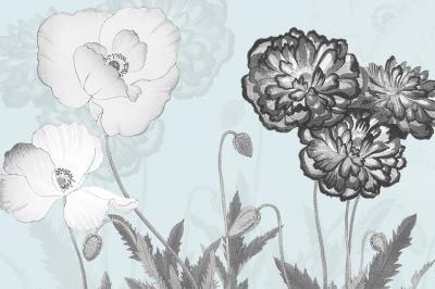 biale-i-szare-kwiaty-na-blekitnym-tle