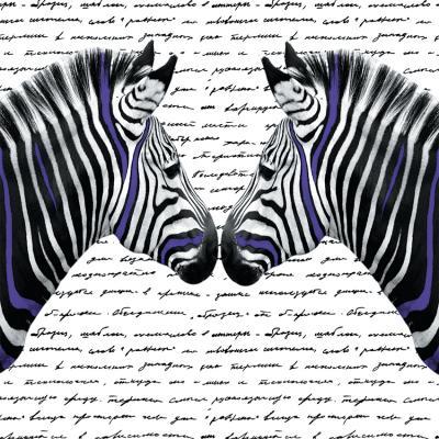 zebry-w-fioletowe-paski-i-czarne-napisy