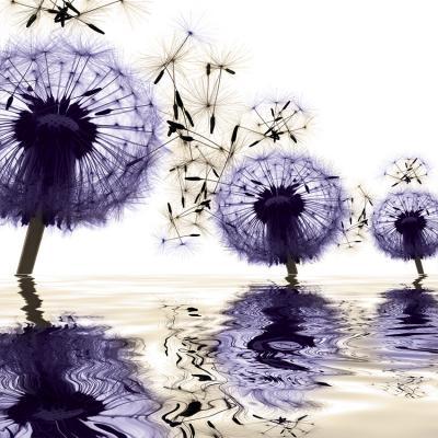 trzy-fioletowe-dmuchawce-w-wodzie