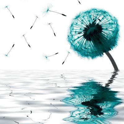 turkusowy-dmuchawiec-i-odbicie-w-wodzie