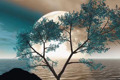turkusowe-drzewo-i-ksiezyc