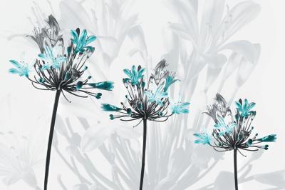 trzy-kwiatki-w-turkusie