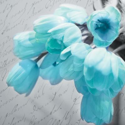 turkusowe-tulipany-i-napisy