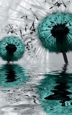 dwa-turkusowe-dmuchawce-i-odbicie-w-wodzie