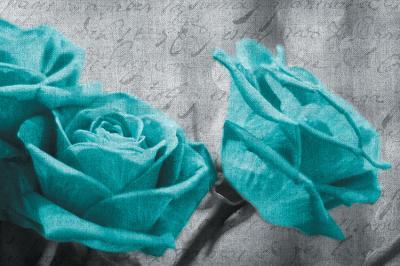 turkusowe-roze