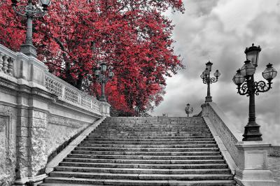 czerwone-drzewo-i-schody