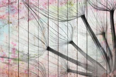 pastelowe-dmuchawce-na-deskach
