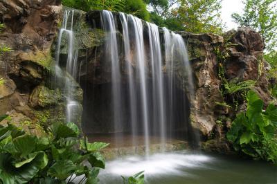 kaskada-w-tropikach