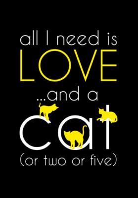 all-i-need-is-love-and-a-cat-zolty